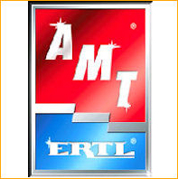 AMT/ERTL instructions