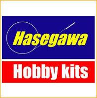 Hasegawa instructions